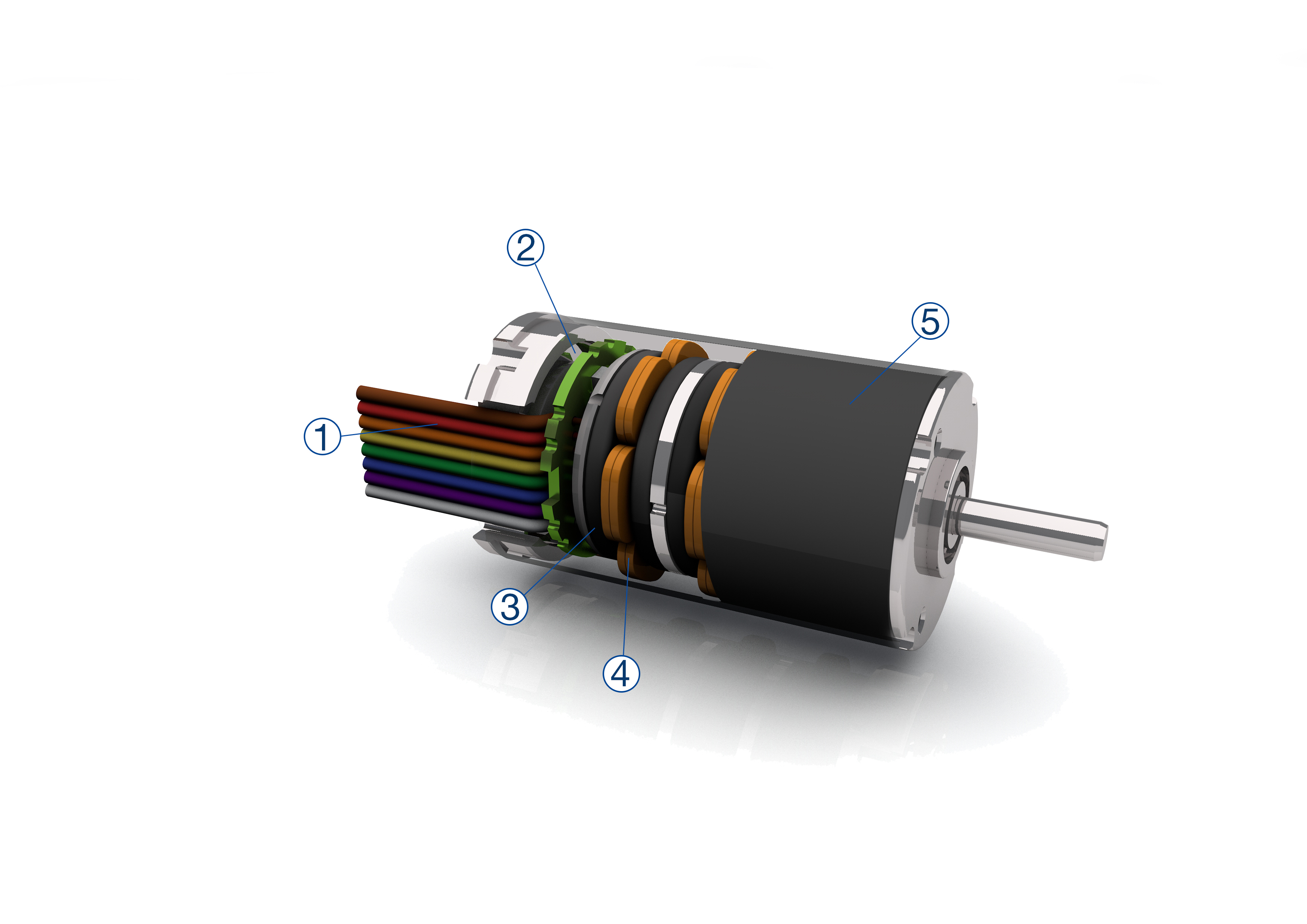 BLDC motor with axial flux principle convinces in small
